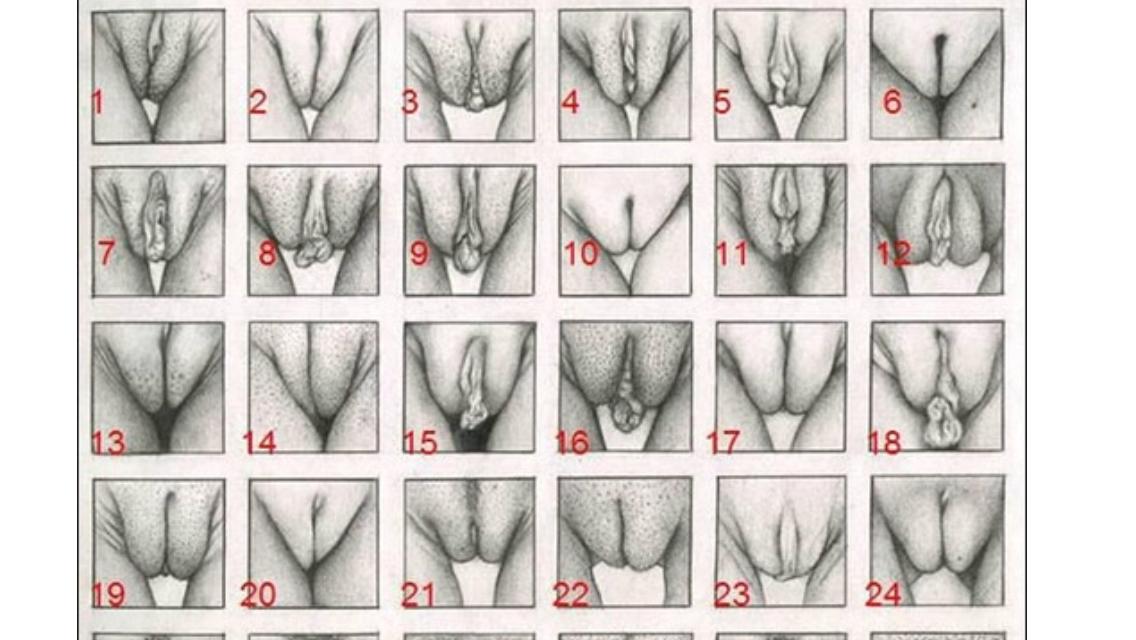 erotik haplar